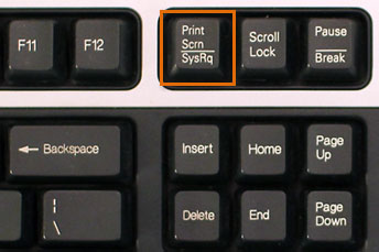 How to Use Your Mac's Function Keys - dummies