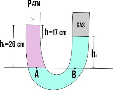 Tubi a u - Volumi uguali di gas diversi ...